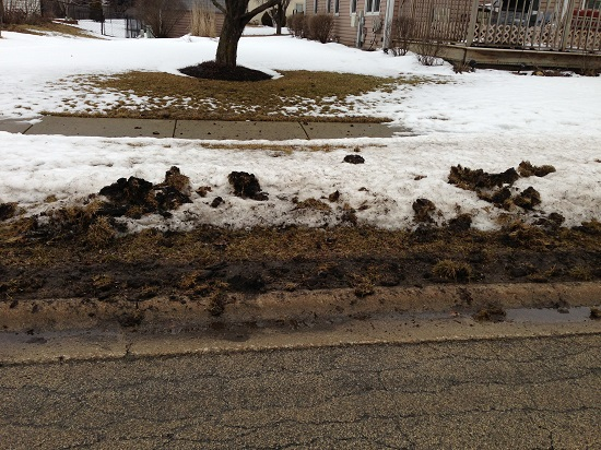 snow-plow-damage-to-lawn-in-bolingbrook-3-2013-03-10.jpg